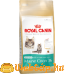 Royal Canin Kitten Maine Coon 36  0.4kg
